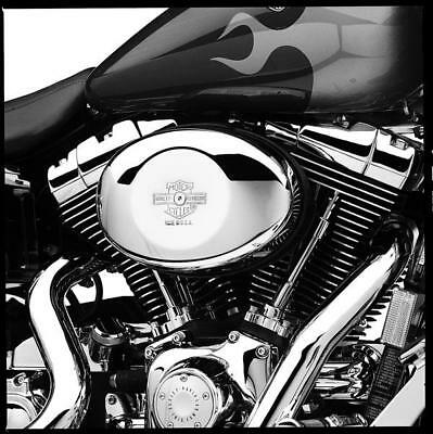COVER FILTRO ARIA HARLEY DAVIDSON OLDSTYLE dyna softail road king electra glide