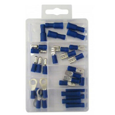 Blue Wiring Connectors - Assorted Pack of 30 - DIY - Electrician - Handy Man