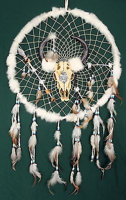 Large Native American Indian Dream Catcher with Animal Skull  NEW