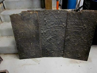 Three Matching Cast Iron Fire Back Sets--9 pieces!