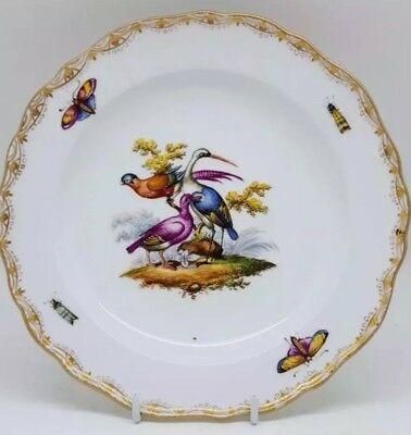 18thC Meissen Rare Bird&Insects Plate Sought after NO RESERVE