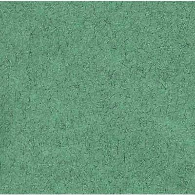 Canson Tissue Papers Fern Green