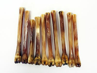 Abbeyhorn Deer Polishing Bones - For use for Cordovan Leather