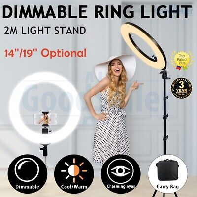 "Pro 19"" 5500K Dimmable Diva LED Ring Light Diffuser Mirror Stand Make Up Studio"