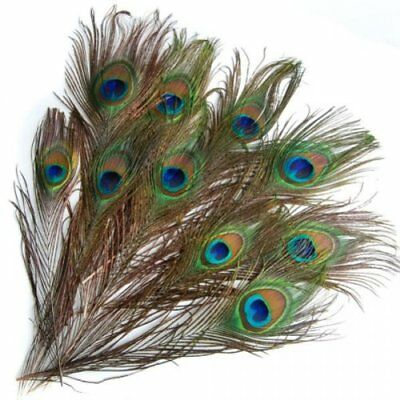 20 pcs Artificial peacock feathers w / Eyes Z6P7 K7Y5