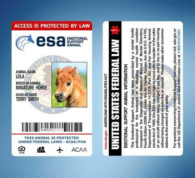 Miniature Horses as Emotional Support Anima ID Card - ADA Rated Personalized ESA
