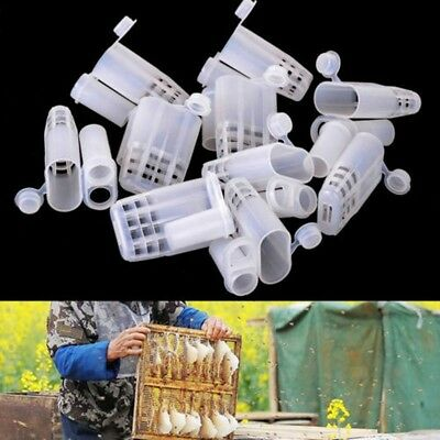 10Pcs Plastic Queen Bee Cages Isolator Rearing Beekeeper Beekeeping Tools DH