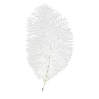 """25 White Soft Floss 7-8""""  (17-20 Cm ) Ostrich Feathers Second B Grade"""