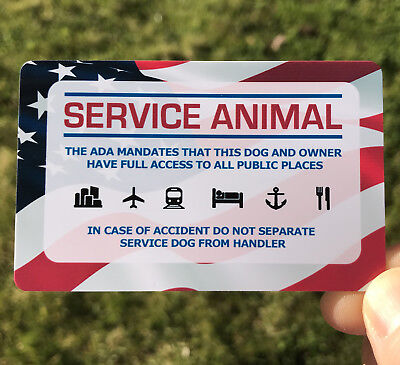 Service Dog ID Info Card - ADA Service Dog Information Tag - HARD PLASTIC CARD