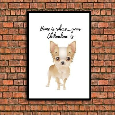 home is where your chihuahua print is a4 gloss UNFRAMED picture gift