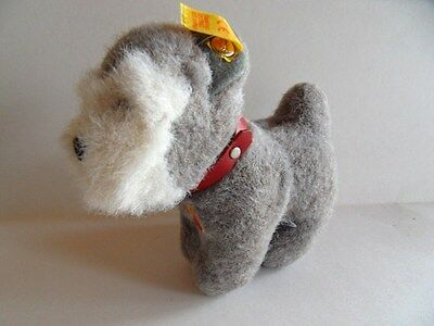Steiff dog  Schnauzer   terrier  miniature  all IDs   made in Germany 196