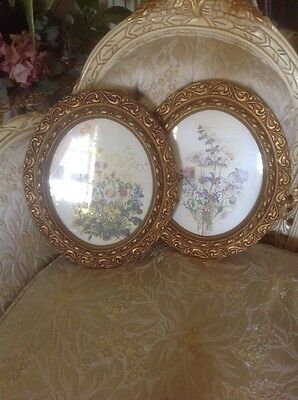Set of 2 Vintage Flower Syroco Art Flower Gold Frames Wall B