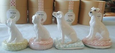 SET OF 4 TOP DOGS Royal Doulton - Doodle, Ollie, Champ, Bobo - NEW in packaging