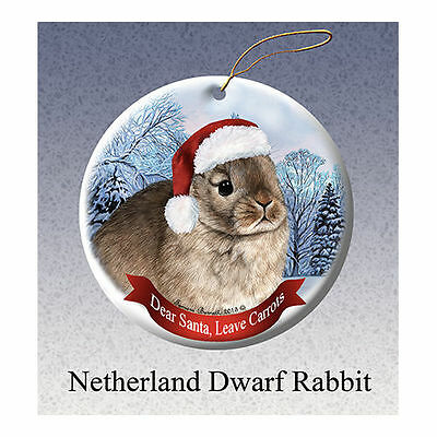 Netherland Dwarf Rabbit Howliday Porcelain China Dog Christmas Ornament