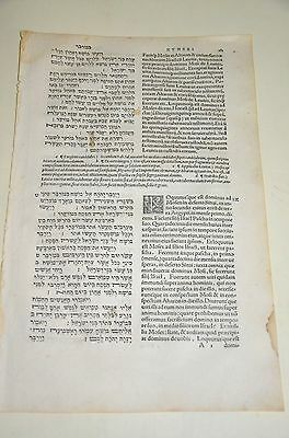 1546 Bible Basel leaf Large  Amazing rare book Judaica Hebrew Latin antique WOW.