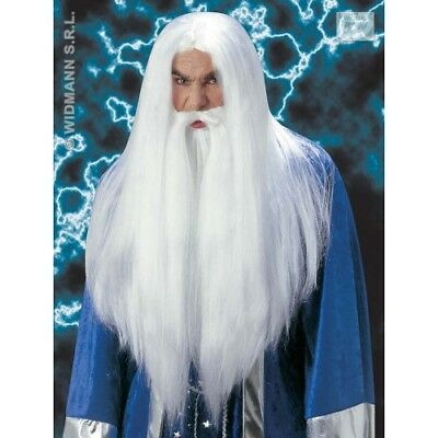 Wizard Wig Beard Moustache White Halloween Magician Merlin Medieval Fancy Dress