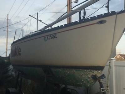 1976 Hunter 25' Sailboat with Trailer