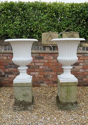 Pair of Cast Iron Planters On Reconstituted Stone Plinths - Plant Pots Ornaments