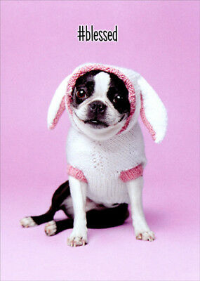 Avanti Dog Easter Bunny Cute Boston Terrier Easter Card