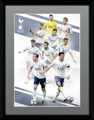 Tottenham - Players 17/18 Collector Print 30 x 41cm
