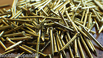 """50g 5/8"""" 15mm ( APPROX 175 ) SOLID BRASS PANEL PINS NAILS TACKS TINY SHORT NOS"""