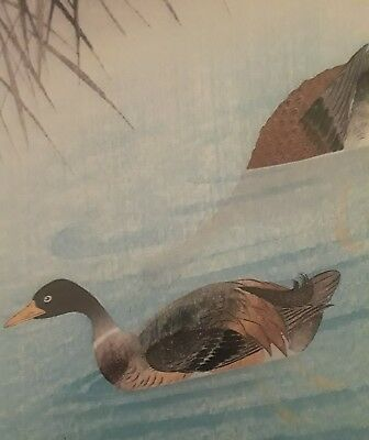 Japanese Print, Soseki Komori, Mallard Ducks on Water