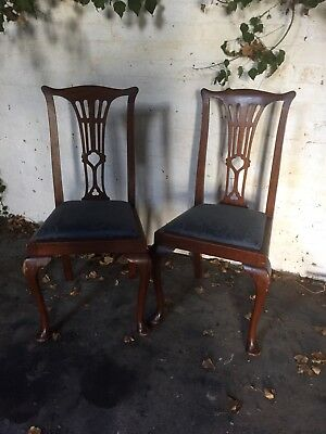 Antique Mahogany Pair Dining Or Hall Chairs Queen Anne Legs Drop In Seats