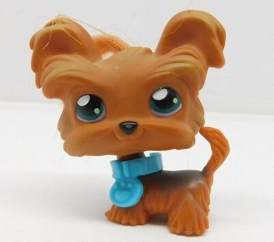 Littlest Pet Shop Lps 6 Dog Yorkie Yorkshire Terrier With Carrier