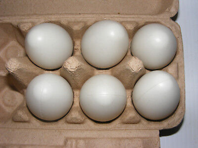 Dummy Fake Plastic brood Eggs Chicken Duck Poultry artificial egg White 6 or 12