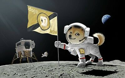 5000 Dogecoin Direct to your Wallet! 100% Guarantee within 24hr