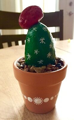Hand Painted Cactus Rock in Terra Cotta pot