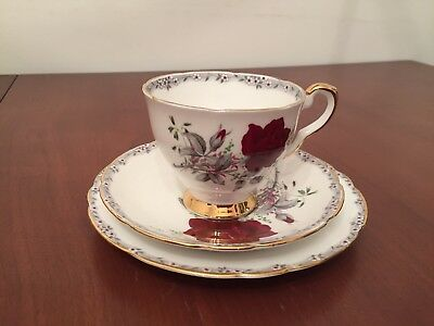 royal stafford Roses To Remember Tea Cup Saucer And Side Plate (6 available)
