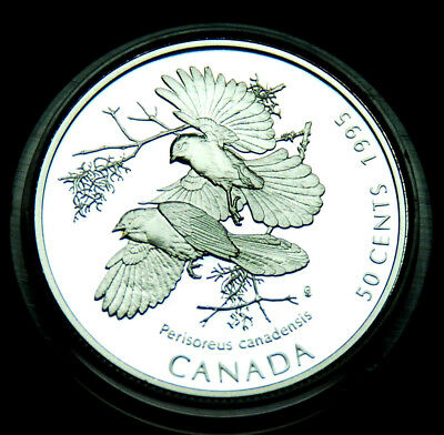 Gray Jay 50¢ ulra cameo silver coin 1995:  Canada on the Wing