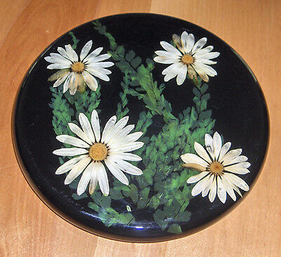 "Vintage Black Acrylic Lucite Dried Daisy Flowers Leaves Trivet 8"" Round W/ Feet"