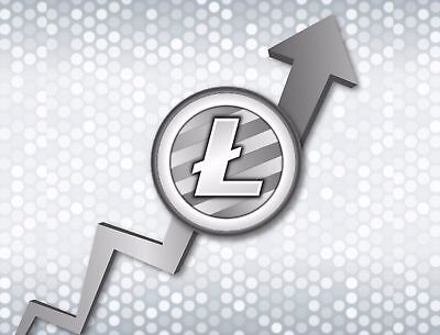 0.08 Litecoin (LTC) - Cryptocurrency Crypto Investment