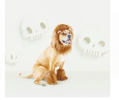 Lion Costume for a Dog - Mane and Front Legs -S/M- Neck size 10-14