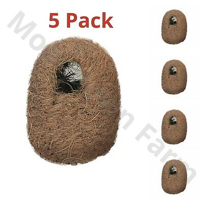 5 x Finch Wicker Coco Nesting Box - Coco Nest -11x9x9 Hooks on Back Finches