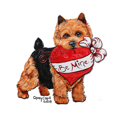 Norwich Terrier Valentine's Cards  Set of 10 Identical Happy Valentine's Day