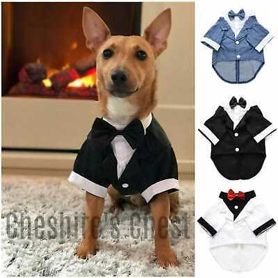 Pet Dog Cat Clothes Suit Tuxedo Bow Tie Wedding Party Puppy Costume + FREE SOCKS