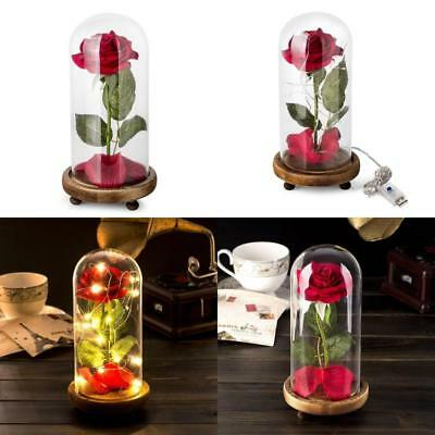 Beauty And The Beast Enchanted Rose Glass Dome LED Valentines Day Gift For Her