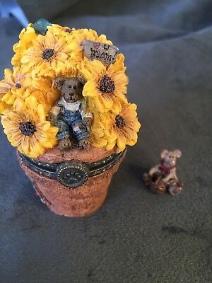 Potter B. Bloombeary with Nibbles-Boyds Bears Treasure Box #392101