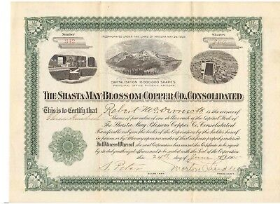 Shasta May Blossom Copper Co. Consolidated  1905