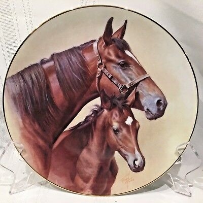Diamond In The Rough Collectors Plate  Fred Stone Artist