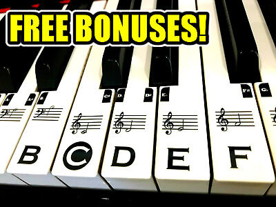 Piano Keyboard CLEAR Stickers FULL SET 49/61/88 KEYS **FREE BONUSES INCLUDED!**