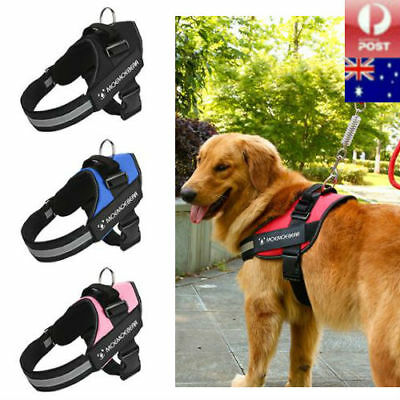 Pet Puppy Dog Cat Soft MESH VEST LEASH Harness Breathe Adjustable Braces Clothes