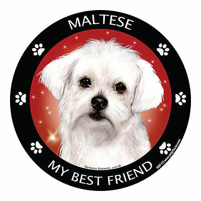 My Maltese Is My Best Friend Dog Car Magnet