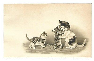 Les chats Chatons Animal domestique - - Chromo - Trade Card