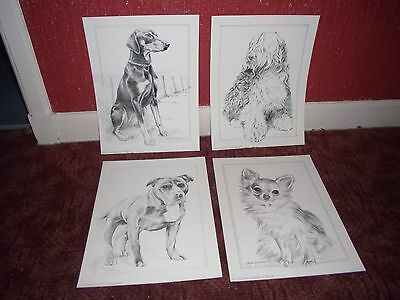 Rare Pollyanna Pickering Dog Breed Prints