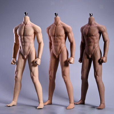 1/6 Scale Male Muscular Seamless Stainless Steel 12-inch Action Figure Body Toy