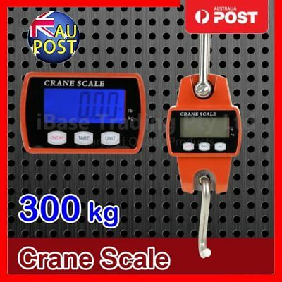 Mini Portable Crane Scale 300kg 0.1kg LCD Digital Electronic Hook Hanging Scale@